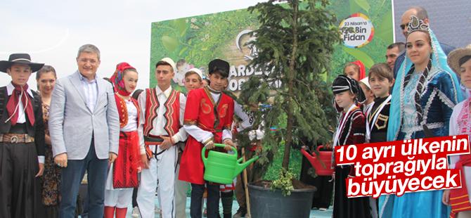 """""""Kardeşlik ağacı"""" 10 ülkenin toprağıyla büyüyecek"""