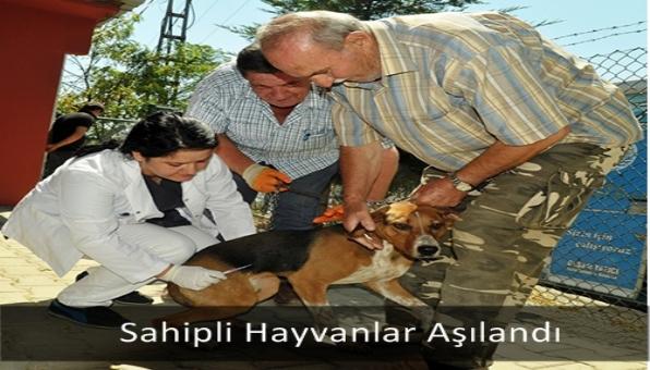 Sahipli Hayvanlar Aşılandı