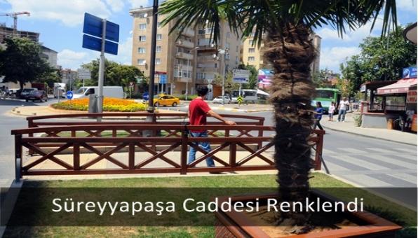 Süreyyapaşa Caddesi Renklendi