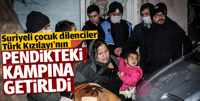 Suriyeli çocuk dilenciler Türk Kızılayının Pendik'teki kampına getirildi
