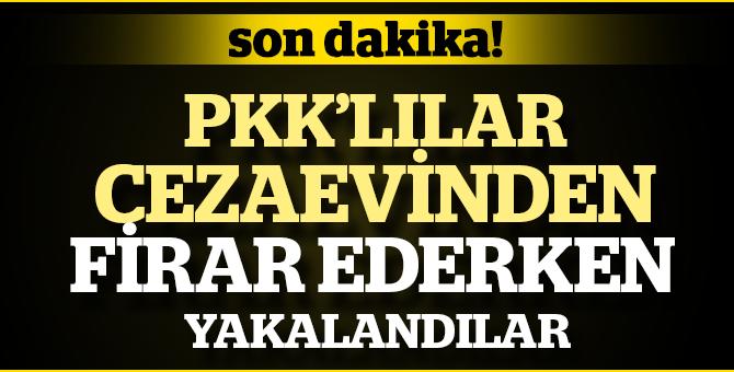 Son dakika... PKK'dan hüküm giyen 17 kişi cezaevinden firar ederken yakalandı