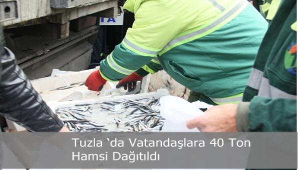 Tuzla 'da Vatandaşlara 40 Ton Hamsi Dağıtıldı