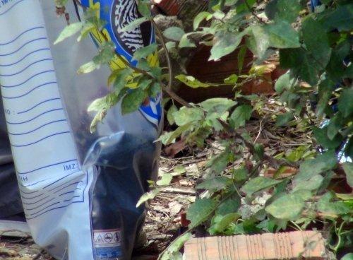 Kartal'da 13 adet molotof ve havai fişek bulundu