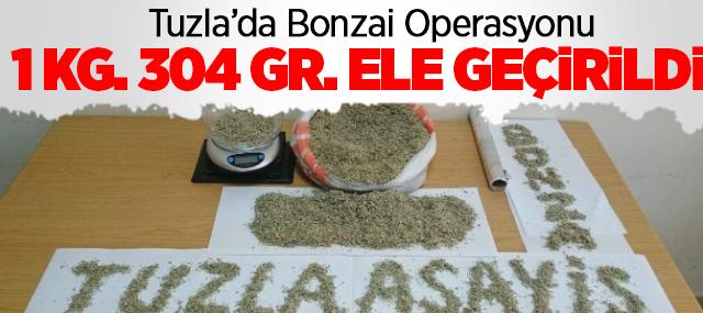 Tuzla'da Bonzai Operasyonu