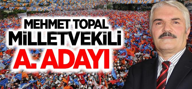 Mehmet Topal Milletvekili A. Adayı