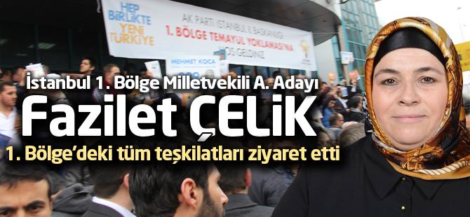 Ak Parti İstanbul 1. Bölge Milletvekili A. Adayı Fazilet Çelik