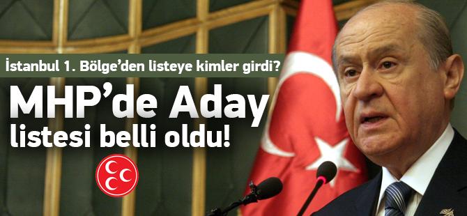 MHP'nin Kesinleşmiş istanbul Milletvekili Adayları 2015