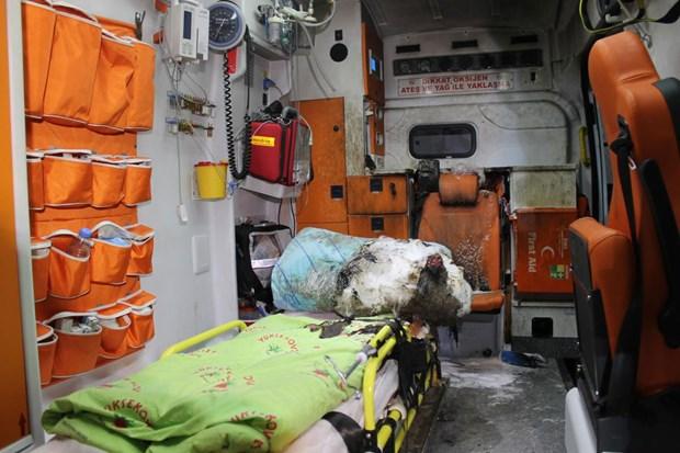 Hakkari'de ambulansa molotoflu saldırı