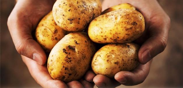 Patatesin fiyatı 2.00 TL kadar düştü