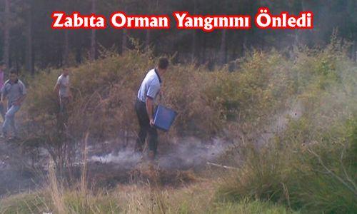 Zabıta Orman Yangınını Önledi