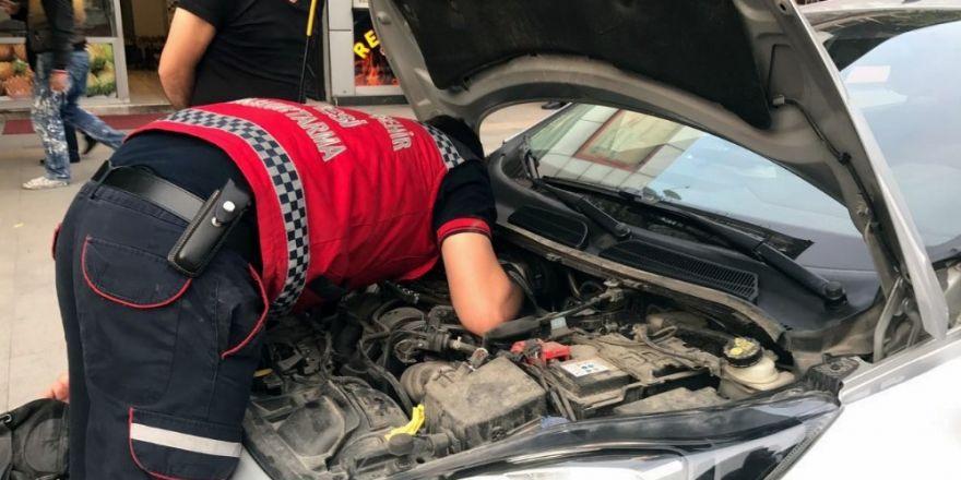 Park halindeki otomobilin motoruna sıkışan kediyi itfaiye kurtardı