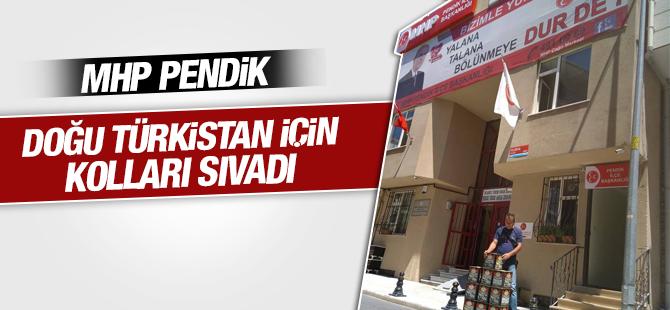 MHP Pendik'ten Doğu Türkistan'a Yardım Eli