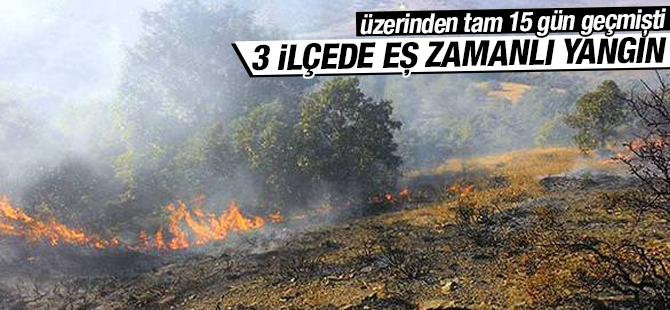 Anadolu Yakasında 3 İlçede Eş Zamanlı Yangın