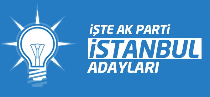 AK Parti İstanbul Milletvekili Kesin Aday Listesi