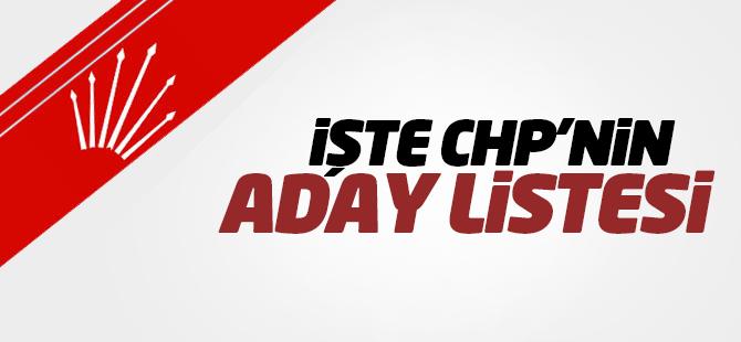 CHP'nin 1 Kasım Seçimleri için milletvekili aday listesi