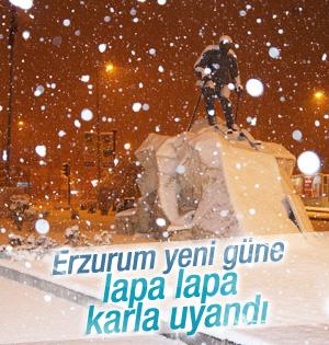 Erzurum güne karla uyandı