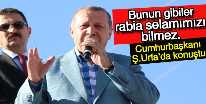 """Cumhurbaşkanı Erdoğan: """"bunlar gibileri bizim Rabiamızı bilemez"""""""