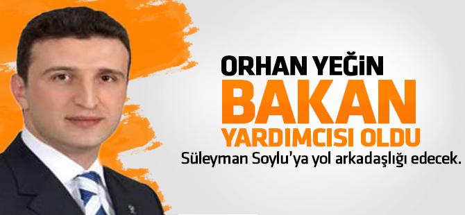 Orhan Yeğin Çalışma ve Sosyal Güvenlik Bakanlığı Yardımcılığına Atandı