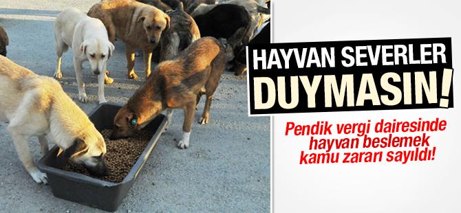 Pendik Vergi Dairesinde Hayvan beslemek kamu zararı sayıldı!
