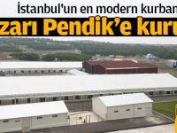 İstanbul'un en modern kurban pazarı Pendik'e kuruldu