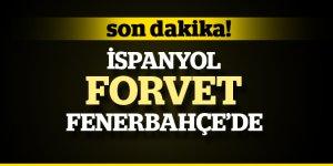 Fenerbahçe İspanyol Forvetle Anlaştı, Soldado'nun Golleri