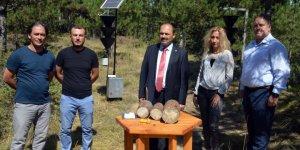 Ormanlardaki zararlı kabuk böceğine karşı elektronik tuzakla mücadele edilecek