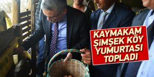 Kaymakam Şimşek Köy Yumurtası Topladı