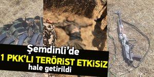 Şemdinli'de 1 PKK'lı terörist etkisiz hale getirildi