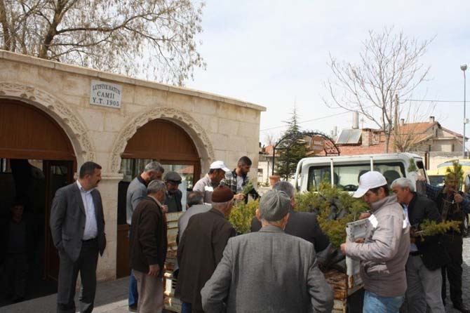 Uçhisar Belediyesi, ücretsiz fidan dağıtımı yaptı